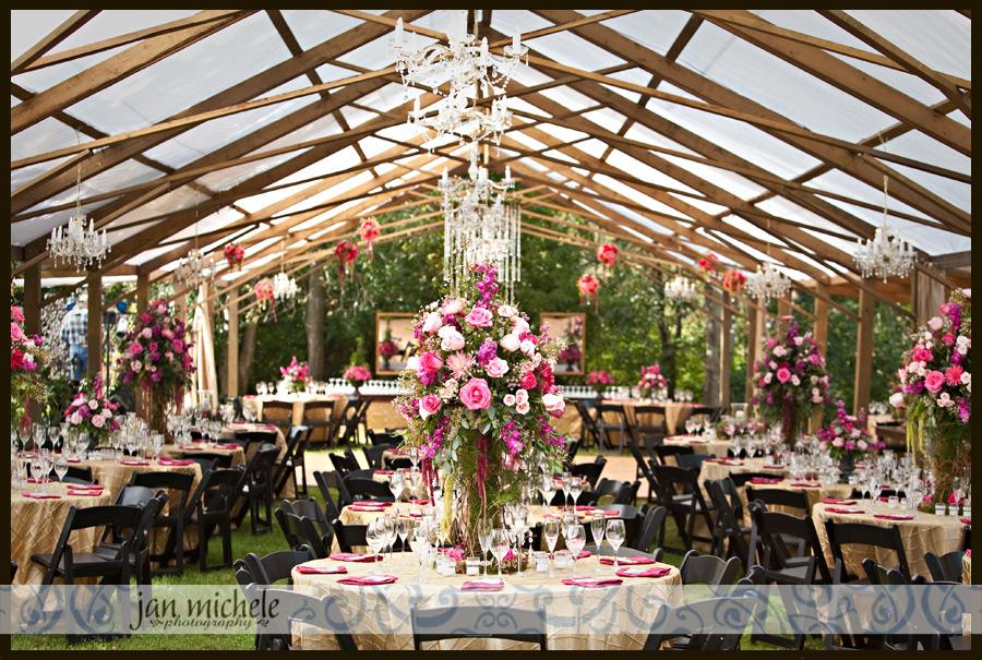 Backyard Wedding Reception On A Budget