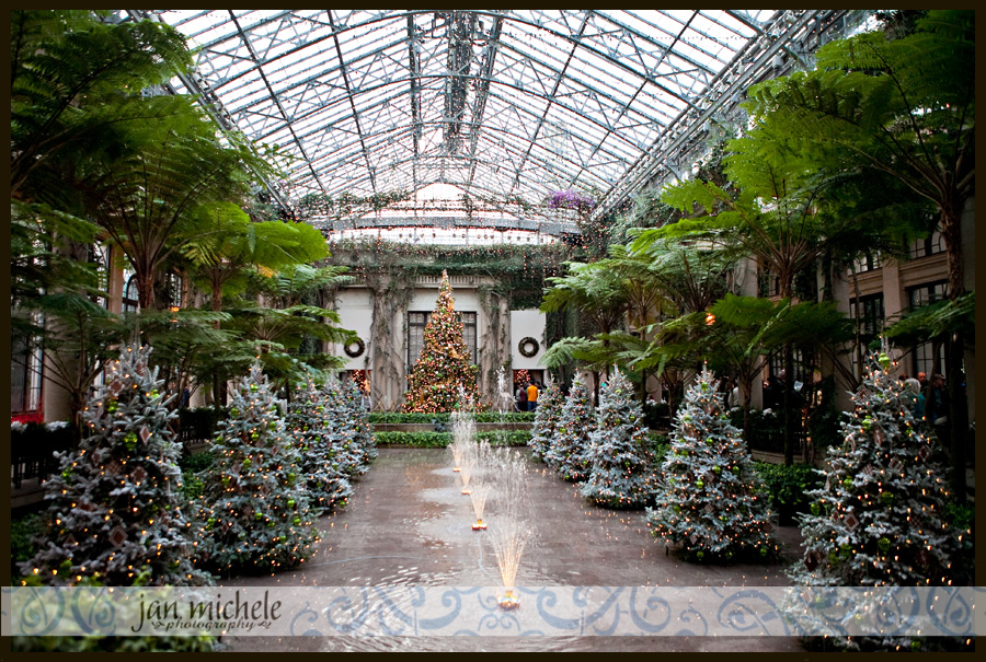 A Longwood Christmas Longwood Gardens Jan Michele Photography