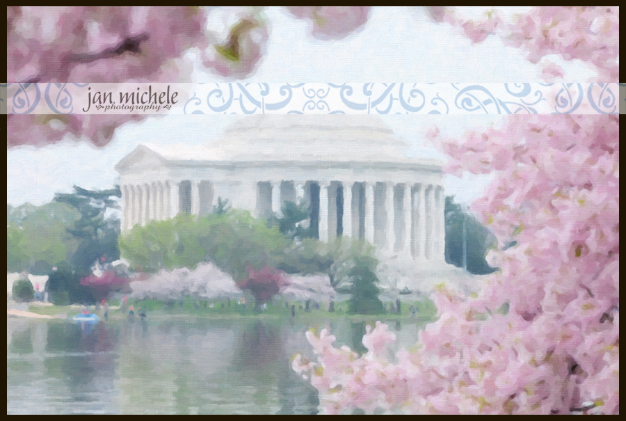 IMG_4189Cherry Blossom Art Pictures Washington DC For Sale