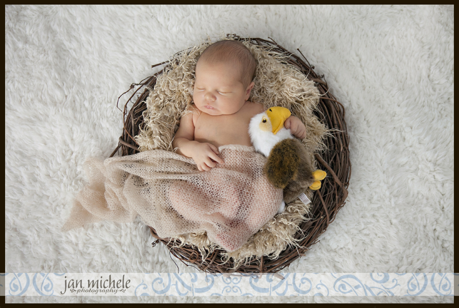 55Washington DC Newborn Posed Photo