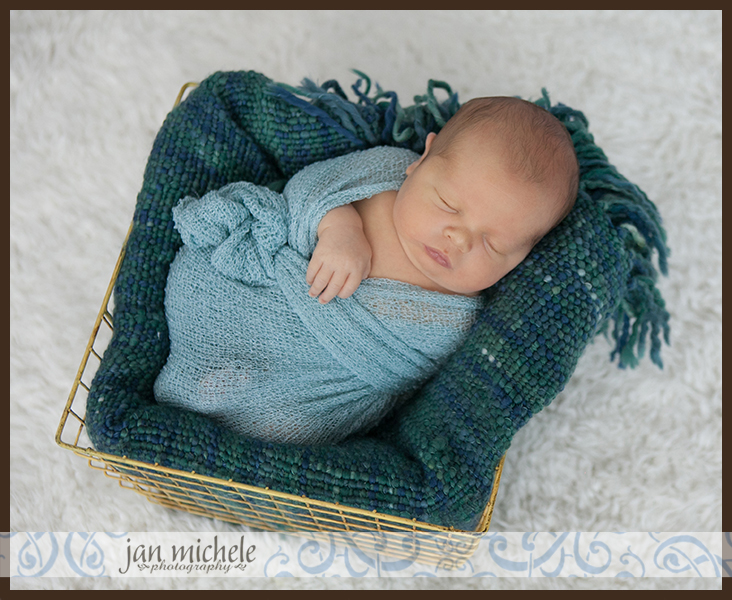 63Washington DC Newborn Posed Photo