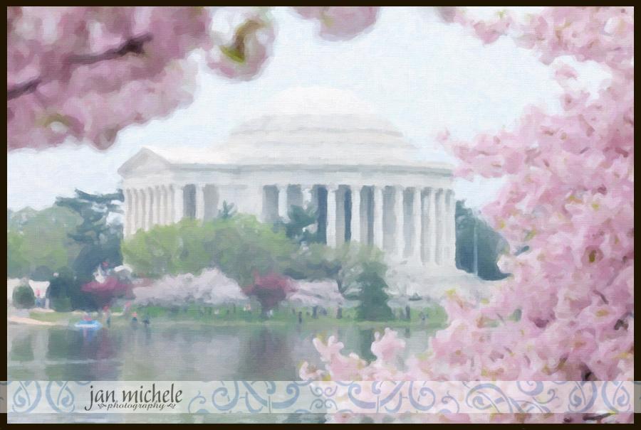 Cherry Blossoms Paint 05