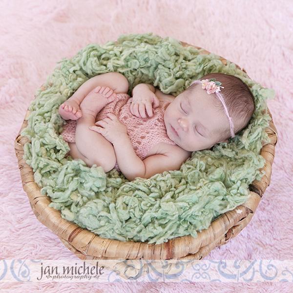 15N best newborn photographer Arlington VA