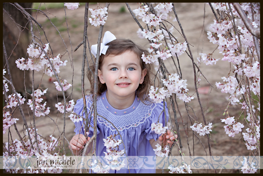 30 cherry blossom pictures with little girls