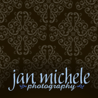jan michele photography logo